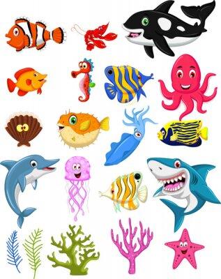 Affisch havsliv tecknad samling