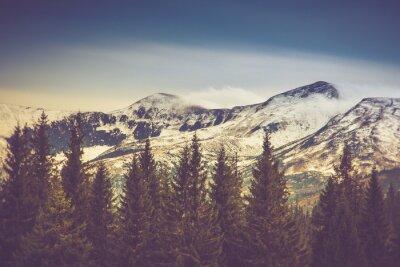 Affisch Höst träd i skogen och snötäckta berg i fjärran.