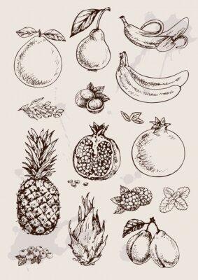 Affisch insamling av hand ritning isolerade frukter