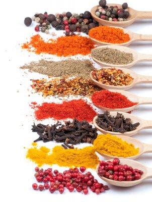 Affisch insamling av kryddor på skedar, isolerade bakgrund
