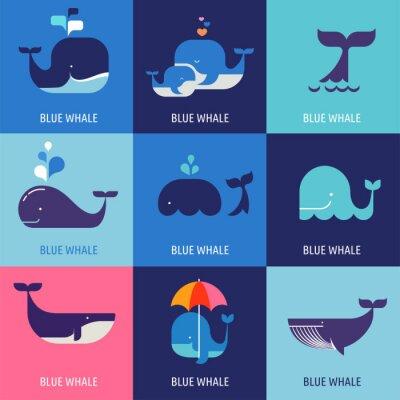Affisch Insamling av vektor whale ikoner