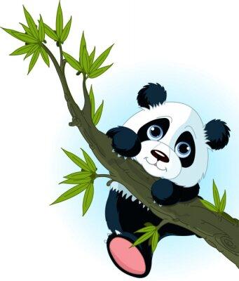 Affisch Jätte panda klätterträd