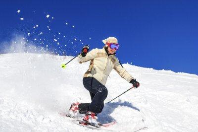 Affisch Joy av skidåkning