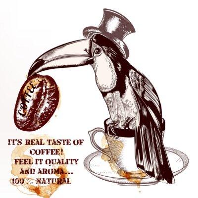 Affisch Kaffe vektor bakgrund eller affisch med handritad toucan fågel h