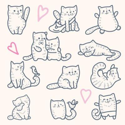Affisch katter