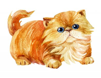 Affisch Kattunge sitter.