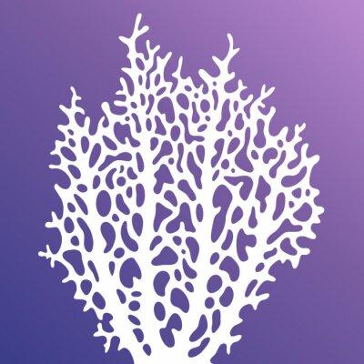 Affisch Korall