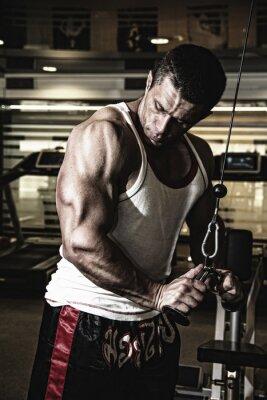 Affisch Kroppsbyggare tränar musklerna i gymmet