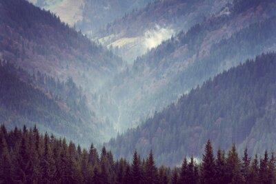 Affisch Landskap av berg skog kullar.