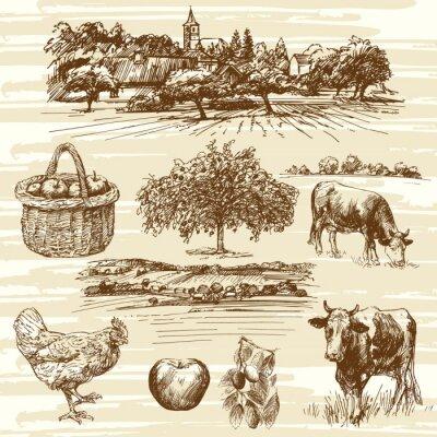 Affisch lantgård, skörd, lantligt landskap - handritad uppsättning