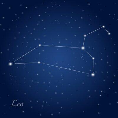Affisch Leo konstellation stjärntecken på stjärnklara natthimlen