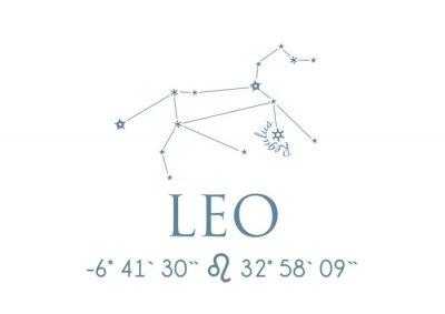 Affisch LEO LEO