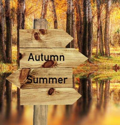 Affisch llego el otoño