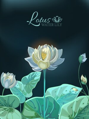 Affisch Lotus flower with green leaves close-up in hand drawn style