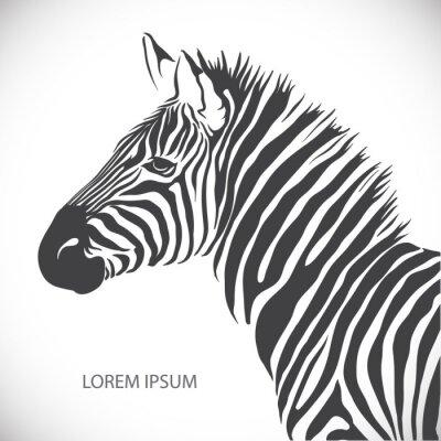 Affisch Märk med huvudet av en zebra. Vektor.