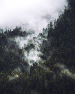 Affisch Mgła