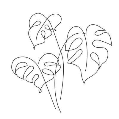 Affisch Monstera Tropical leaf