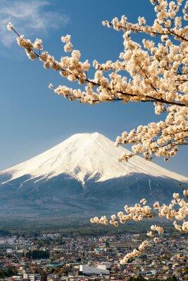Affisch Mount Fuji med grenar av körsbärsträd, Japan
