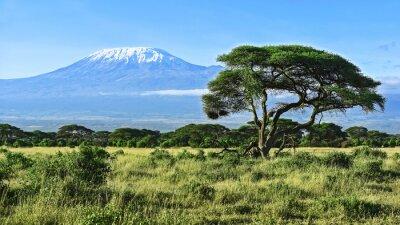 Affisch Mount Kilimanjaro i Kenya