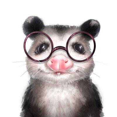 Affisch Opossum illustration. Cute animal portrait isolated on white