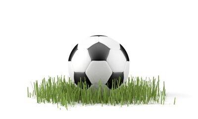 Affisch Palla da calcio su Erba