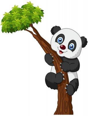Affisch Panda tecknad klätterträd