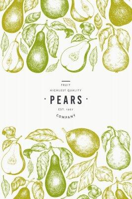 Affisch Pear design template. Hand drawn vector garden fruit illustration. Engraved style garden fruit frame. Retro botanical banner.