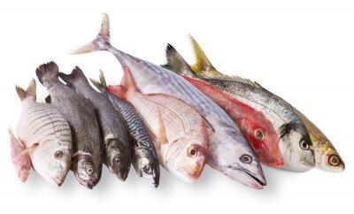 Affisch pescato mediterraneo in fondo bianco