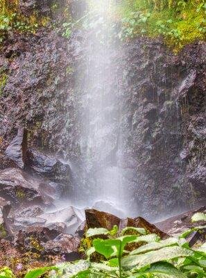 Affisch petite ränna d'eau à Anse des Cascades, Ile de la Réunion
