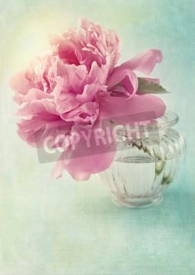 Affisch Pion blomma i en vas