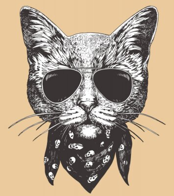 Affisch Portrait of Cat with sunglasses and scarf. Hand-drawn illustration. Vector