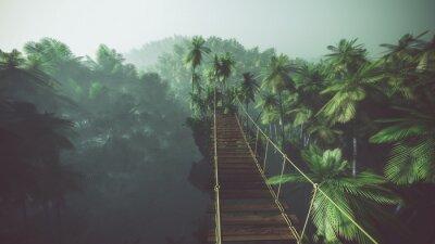 Affisch Rep bron i dimmiga djungeln med palmer. Bakgrundsbelysning.