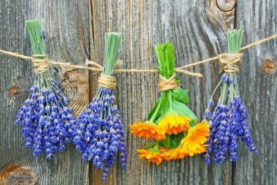 Affisch Ringelblume und lavendel