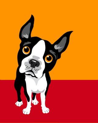 Affisch rolig illustration av Boston Terrier