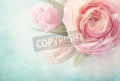 Affisch Rosa blommor i en vas