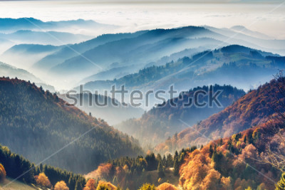 Affisch Scenic mountain landscape. View on the Black Forest, Germany, covered in fog. Colorful travel background.
