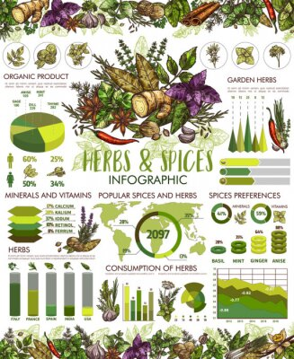 Affisch Seasonings, herbs and spices infographic