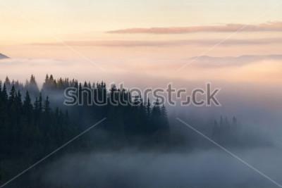 Affisch Skog i bergen täckt med dimma
