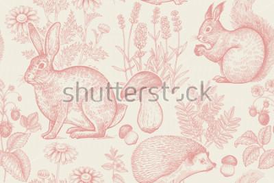 Affisch Skogsdjur och planter seamless pattern. Hare, igelkott, ekorre, bär jordgubbar, blommor lavender, kamomill och svamp. Handritning. Vit och röd. Tappningstryck. Vektor illustration