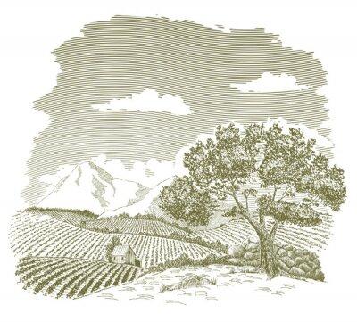 Affisch Skriva och bläckteckningen av en gård fält med berg i bakgrunden.
