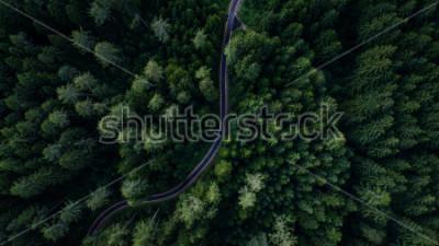 Affisch Smal gata mellan skogsmark, drons utsikt