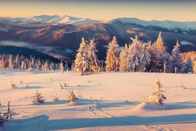 Affisch Solig morgon soluppgång på vintern berget. Retro stil.