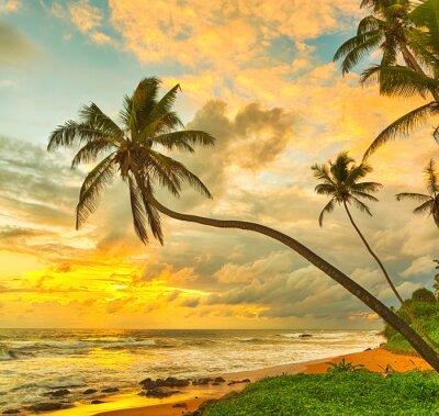 Affisch Solnedgång över havet