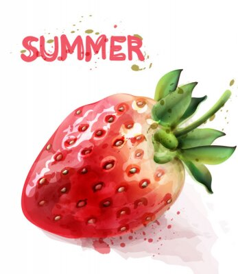 Affisch Strawberry isolated Vector watercolor. Fresh fruit summer seasonal cards