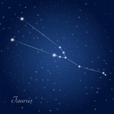 Affisch Taurus konstellationen stjärntecken på stjärnklara natthimlen