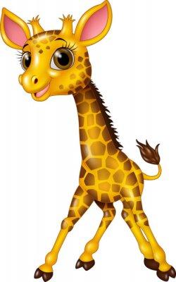 Affisch Tecknad bebis giraff isolerade på vit bakgrund