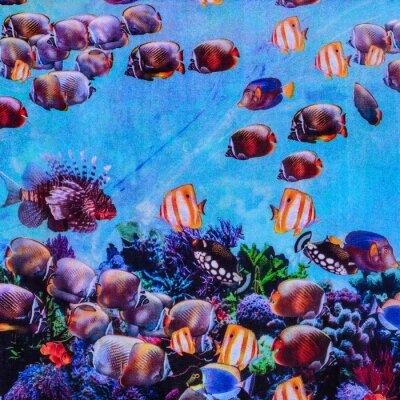 Affisch textur tryck tyg randig akvarium