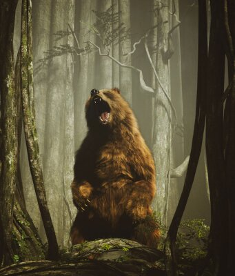 Affisch The forest's tales,Brown grizzly bear in magical forest,3d illustration