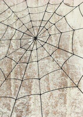 Affisch Toile surd'araignée un mur. gatukonst