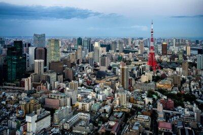 Affisch Tokyo utsikt över staden